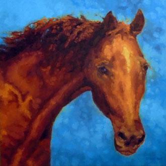 Chestnut, 24 x 24- Pet Portrait Commissions also available!
