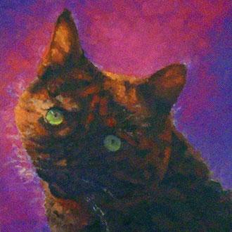 Tortie Love, 18 x 18- Pet Portrait Commissions also available!