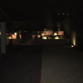 New garden lights