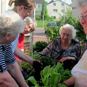 Mit Pflanzen kennen sich viele Gäste aus