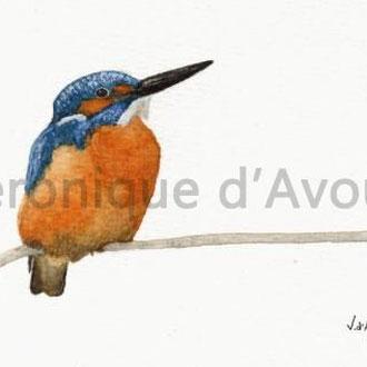 Martin pêcheur, aquarelle, vendu