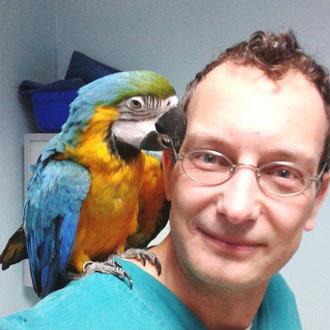 pappagallo veterinario milano
