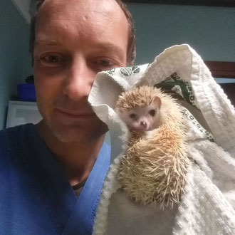 riccio veterinario milano