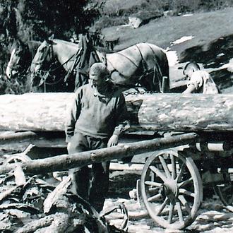 David Hefti, Fuhrhalter