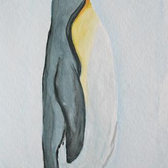 "schmollender Pinguin, 20x40, 2008, Aquarell, Motiv aus ""Pinguin"", Frans Lanting, 2011"