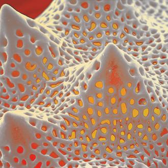 """hot spot"", kolorierter Pollen (Asteraceae), Druck auf Alu, 2014, 80 x 60 cm"