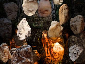 De stenen van de Sjamaan www.sjamaan.nl