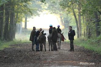 Les ânes de Madame - Week-end randonnée et brame du cerf en Sologne - Vacances famille en Val de Loire