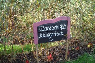 Herzlich Willkommen, wir begrüssen Sie am Weidenlehrpfad Kleingartach. Entdecken Sie 51 Sorten Weiden und bekommen Sie Anregungen, was man aus Weide alles flechten kann. Zahlreiche Weideninstallationen und Weidengeflechte geben Auskunft hierrüber.