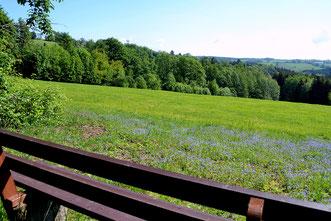 Bild: Wünschendorf Bänkequiz