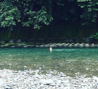 8月23日(水)
