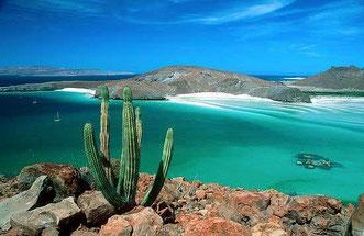 Turismo de avenetura, Baja california Sur