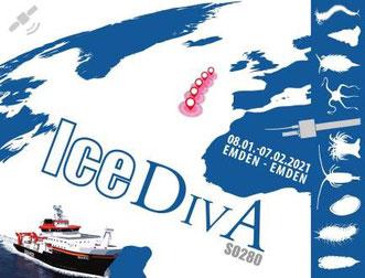 The IceDivA (Icelandic marine Animals meet Diversity along latitudinal gradients in the deep sea of the Atlantic) expedition will be under way from 8 January until 7 February.  © Viola Siegler | SENCKENBERG am Meer