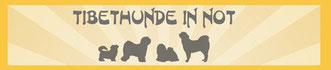 Tibethunde in Not