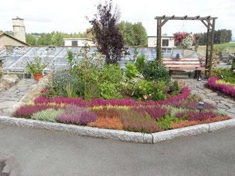 beet und balkonpflanzen gaertnerei kaempfes webseite. Black Bedroom Furniture Sets. Home Design Ideas