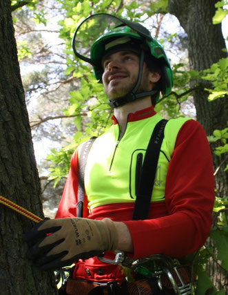 Manuel Moitz ist Gründer der Kletter Support GmbH und erfahrener Baumpfleger, geboren in der Nähe von Köln / Bonn