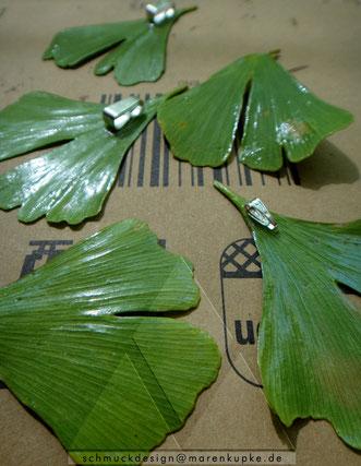 Grüne Ginkgoblätter mit Anhängerschlaufe in Arbeit