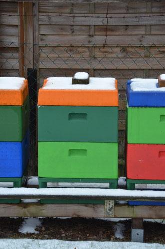 unser bienenstand bienenbursche hobbyimkerei mehr als honig und bienen. Black Bedroom Furniture Sets. Home Design Ideas