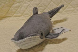 マリタイムコレクション クジラ M