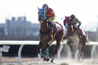 シークレットオース号と鞍上の大畑雅章騎手