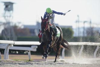 ミスミランダ―号と鞍上の吉井友彦騎手