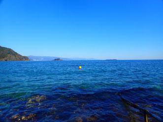 のんびりとした雰囲気の川奈ビーチで、安心・満足のいくダイビングとなるようお手伝いしています。