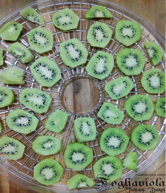 come seccare i kiwi