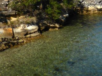 Snug Beach water and sandstone