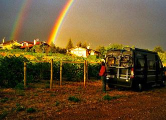 Stellplatz am Weingut in Lizarra