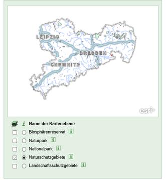 Fliegenfischer-Sachsen-Flyfishing