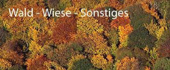 Bücher & Broschüren - Wald, Wiese, Sonstiges | Institut für Tierökologie und Naturbildung