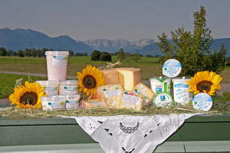 Joghurt und Käseprodukte präsentiert vor Berglandschaft