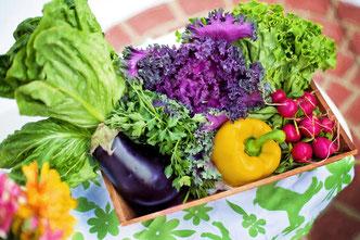 conseil-nutrition-diététique-alimentation