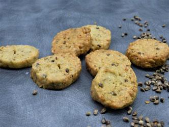 Le quinoa français, un ingrédient indispensable pour varier vos repas
