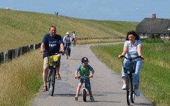 Radfahrer am Nordsee-Deich