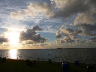 Sonnenuntergang am Nordseedeich auf Pellworm