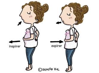 a-gauche-dessin-d-une-femme-qui-inspire-en-gonflant-le-ventre-a-droite-dessin-d-une-femme-qui-expire-en-sortant-le-ventre-