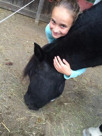 zu den Pferden eine freundschaftliche Beziehung aufbauen