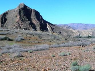 Habitat présaharien à ssp. harterti dans la Haute Vallée du Zegmouzen, Anti-Atlas nord-oriental