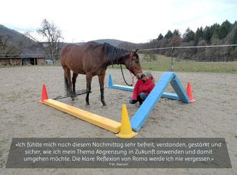 Abgrenzung lernen in einem pferdeunterstützten Coaching_horse-feedback.ch