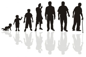 evolution age ostéopathe arènes toulouse