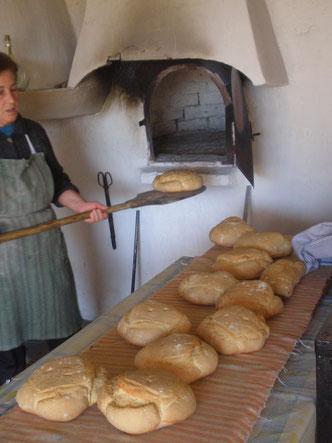 amasar pan en galera