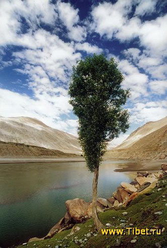 48. Пейзаж Тибета.