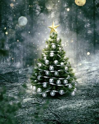 Das traditionelle Weihnachtsbaum aufstellen ist immer am Freitag vor dem ersten Advent. Mit Glühwein und leckerem Essen geht es dann in die  Weihnachtsfeier mit DJ - Tanzmusik.
