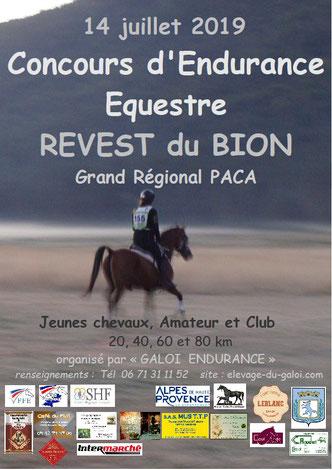 endurance équestre à Revest du Bion, juillet 2017