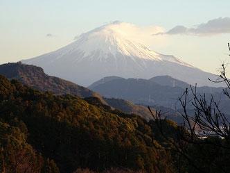 谷津山から望む富士山