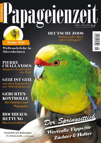 Cover Papageienzeit 49 mit dem Springsittich und inhaltlicher Beschreibung zu seiner Haltung und Zucht, außerdem geht es um Geburtenkontrolle, ein Züchter berichtet über Geiz ist geil, Park Pierre Challandes und eine Rettung von einem Hochhaus