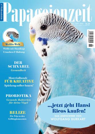 Papageienzeit 46 mit einem schönen hellblauen Wellensittich berichtet über den Schnabel, Materialkunde für Kreative, Probiotika und besucht die Gelbkopfamazozen in Belize