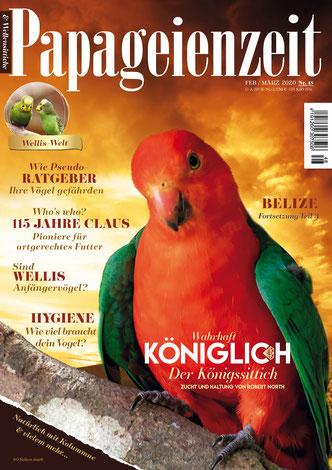Titel Papageienzeit 48 der australische Königssittich und seltene Mutationen, gefährliche Pseudoratgeber, 115 jähre Firma Claus, Willis Anfängervögel?