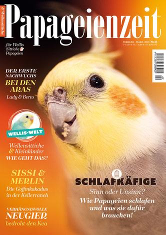 Papageienzeit 42 mit einem Nymphensittich klärt auf über Schlafkäfige, Leserbericht Sissi und merlin, Kea und seine Neugier, erster Nachwuchs bei zwei Aras
